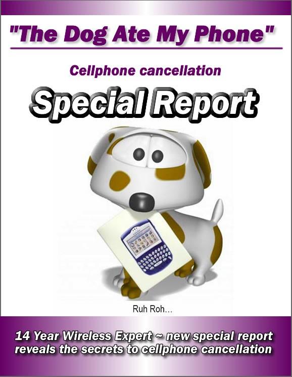 Cell phone salesperson duties